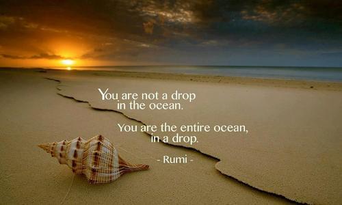 Entire Ocean Drop